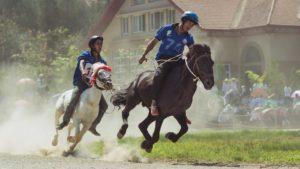 Bac Ha Horse Racing Festival