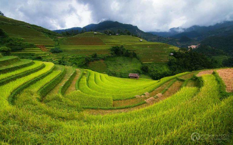 Northern Vietnam 30