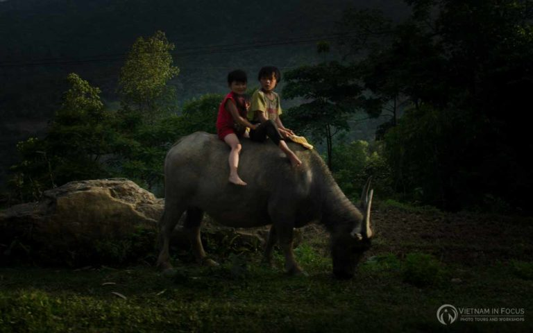 Northern Vietnam 2