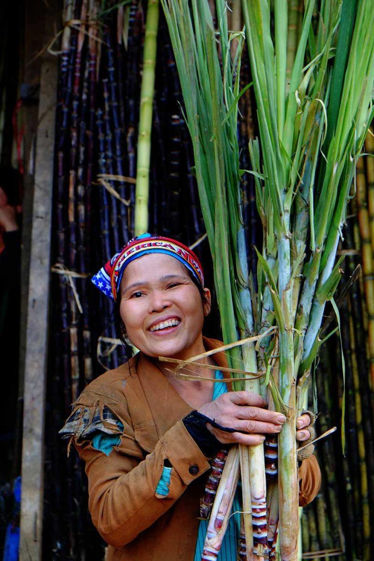 Hanoi Bamboo Street