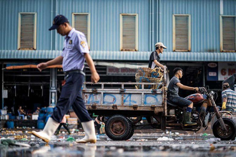 Southern Vietnam 11
