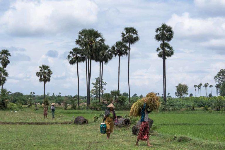 Myanmar by Rail