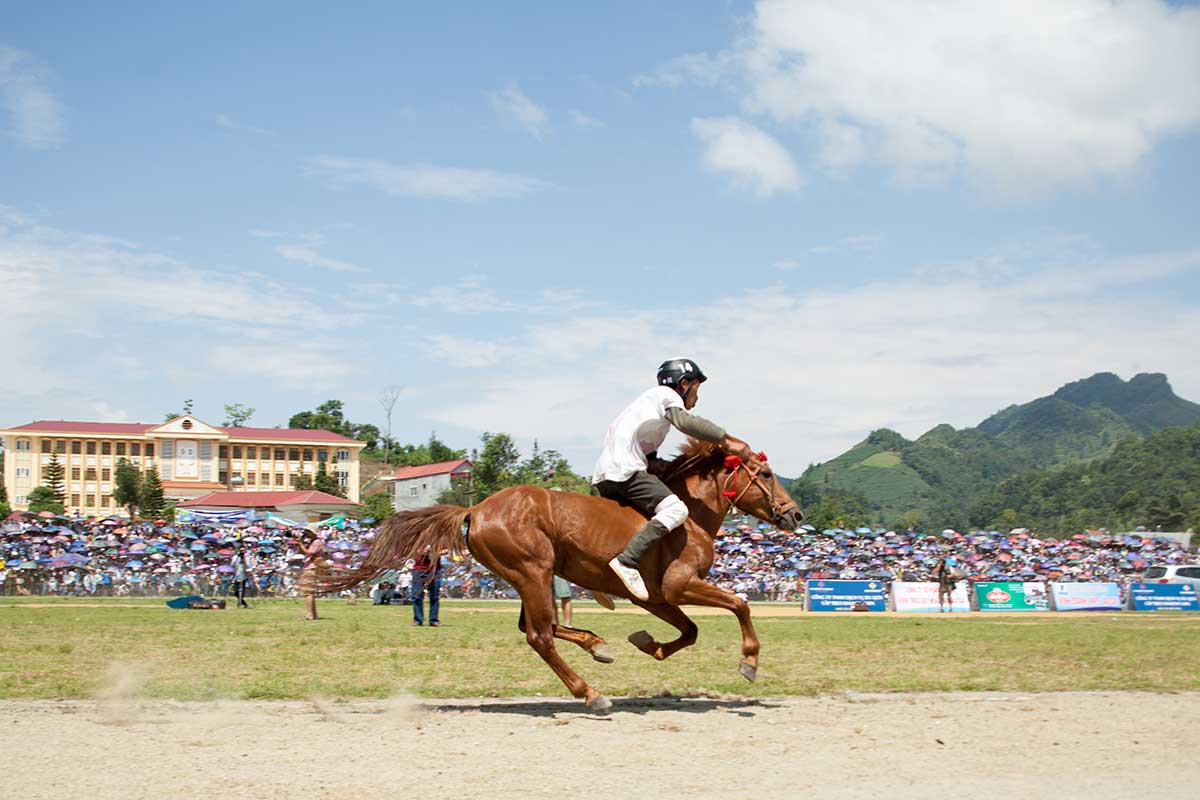 Bac Ha Horse Racing Festival